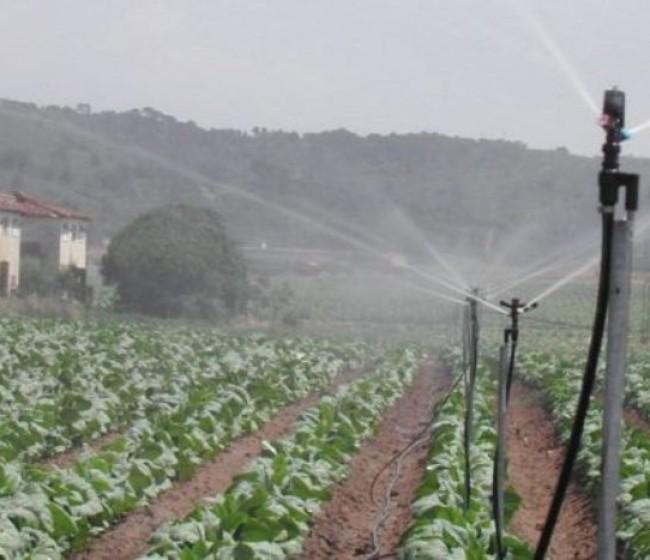 Los regantes defienden un nuevo Plan Hidrológico Nacional que devuelva al Estado sus competencias