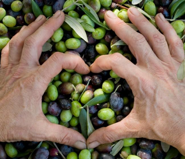 El consumo mundial de aceite de oliva superará a la producción en 2020/21 por segunda campaña consecutiva