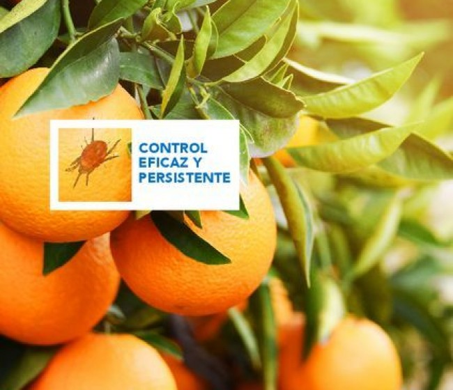 Certis lanza dos nuevos insecticidas-acaridas, Neudosan y Award