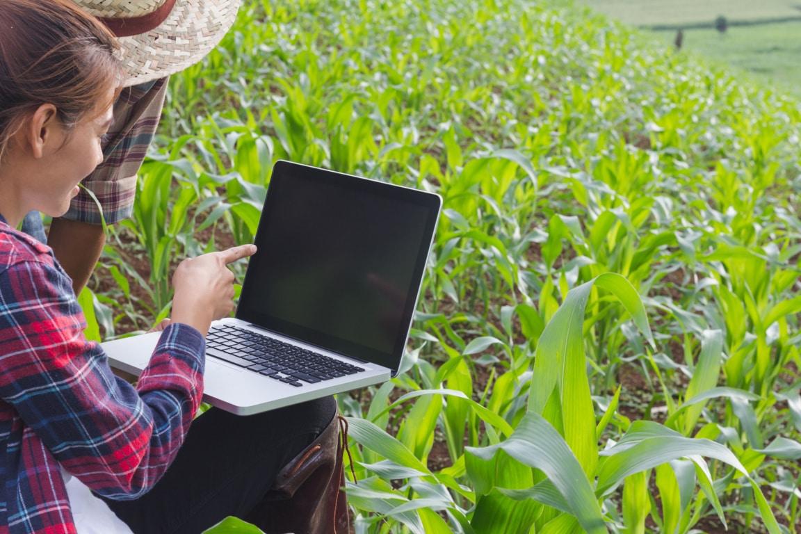El sector agroalimentario lleva al pleno empleo a ingenieros agrónomos de Aragón, Navarra y el País Vasco