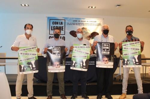 Movilización del sector vacuno de leche andaluz, que se manifestará por los bajos precios