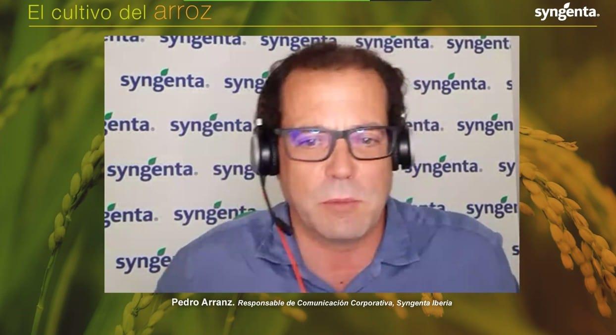 Syngenta analiza las estrategias de control de Pyricularia en arroz