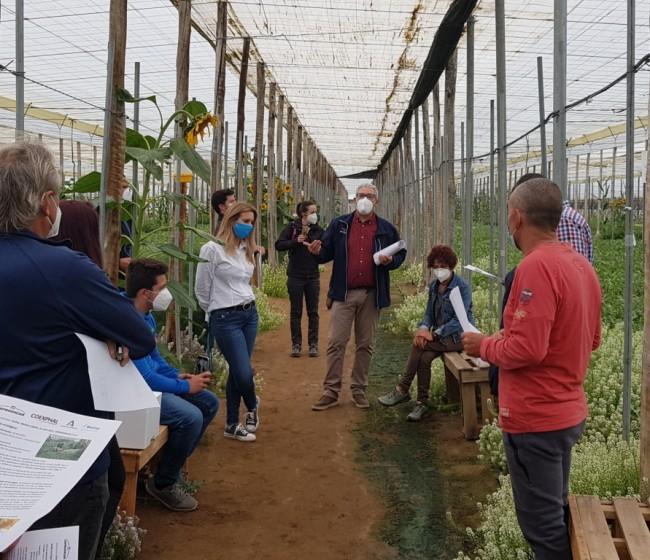 """La Red Rural Nacional organiza una jornada informativa sobre el Programa """"Cultiva"""" 2021"""