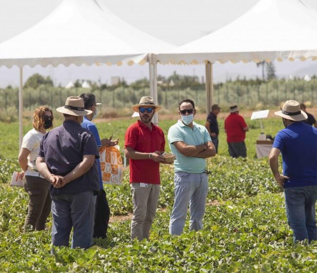 Basf presenta en Cartagena sus nuevas variedades de melón y sandía
