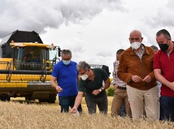 """El """"granero"""" de España prevé una cosecha de 7 Mt de cereal de invierno en 2021/22"""