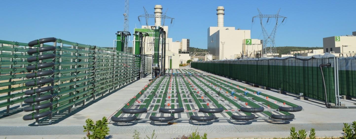 Caixa Capital Risc y el CDTI entran en el accionariado de AlgaEnergy