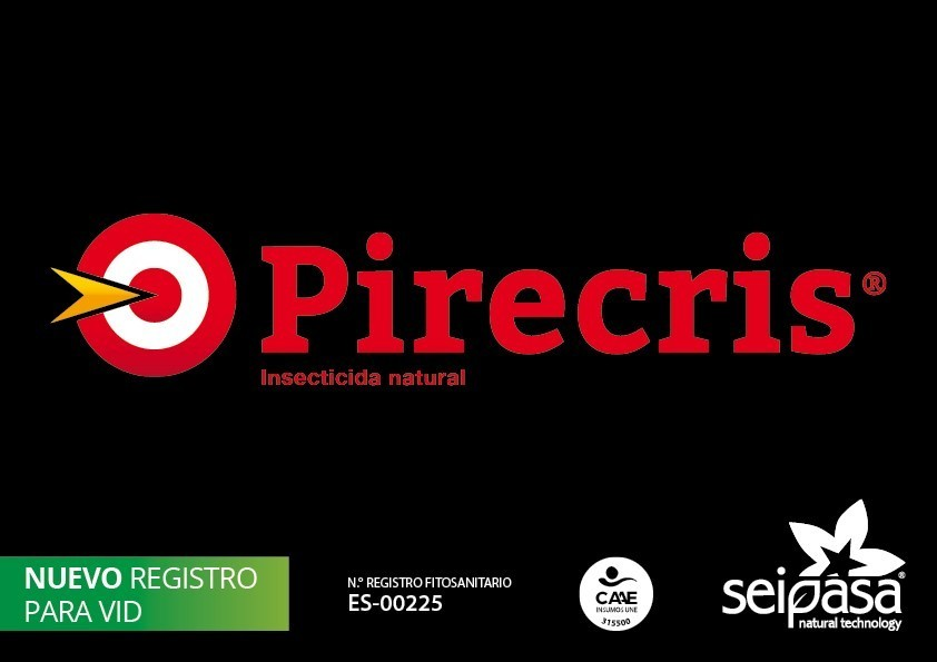 IMG_Pirecris-vid _baja