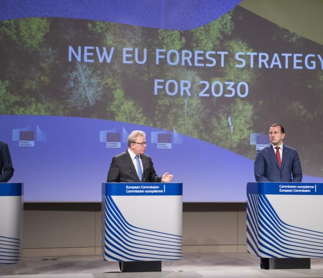Bruselas propone una nueva Estrategia para proteger y restaurar los bosques comunitarios