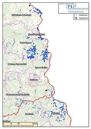 csm_Map_ASP_Hausschwein_DE_2021-07-15_b37a3dc0b4