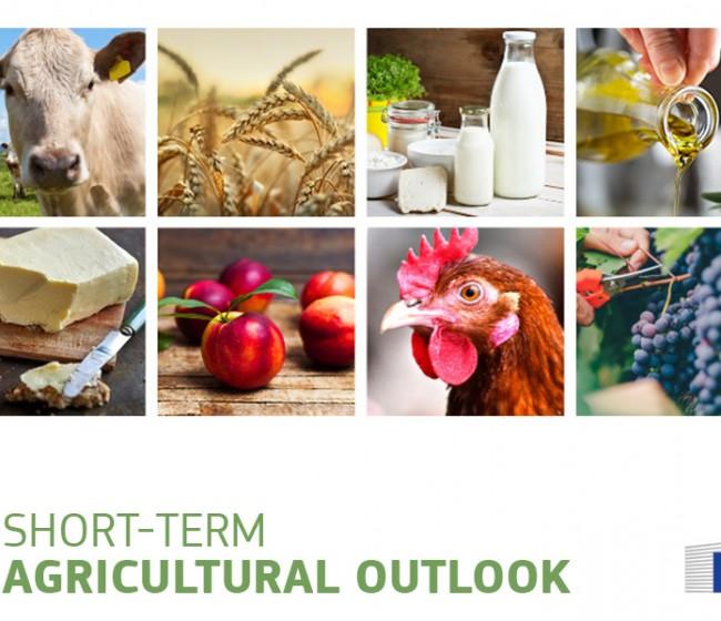 Bruselas confirma perspectivas positivas para el sector agrario de la UE a corto plazo