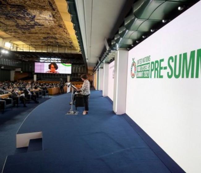 La precumbre ONU en Roma constata coaliciones internacionales hacia el Hambre Cero