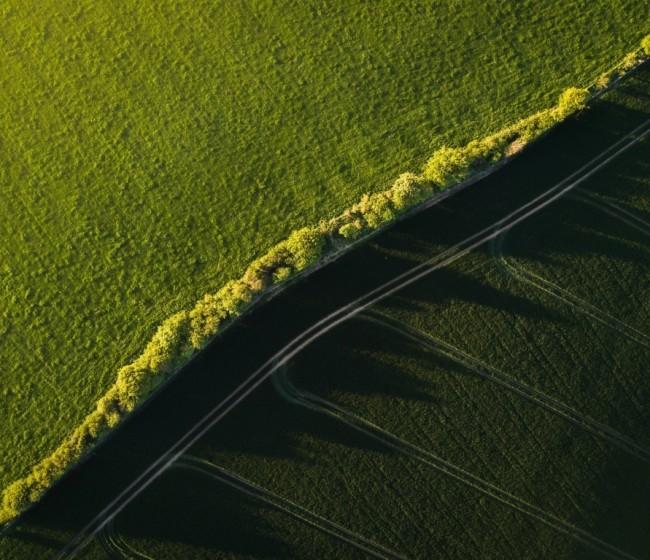 Cuantificar bien el uso del nitrógeno: clave para mejorar su gestión en la agricultura y reducir la contaminación