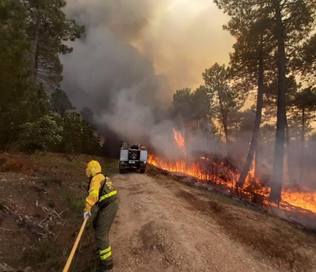 Incendios forestales: cerca de la media en siniestros y superficie forestal quemada en julio