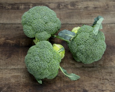 Sakata revoluciona el cultivo del brócoli para el invierno con Ulysses