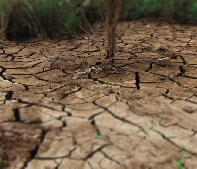El grupo de expertos IPCC vuelve a alertar sobre el ritmo actual de emisiones de gases de efecto invernadero