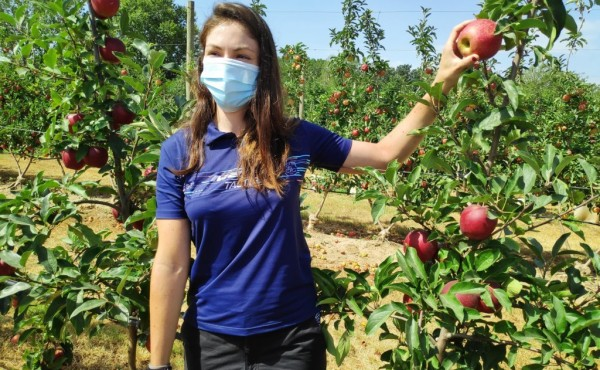 El paro registrado en Agricultura bajó un 7,7% y en casi 13.500 personas en agosto