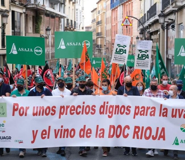 Los viticultores riojanos reclaman «unos precios dignos para la uva y el vino de la DOC Rioja