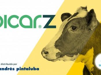 Bicar®Z ayuda a prevenir la acidosis y aumenta la productividad de los animales