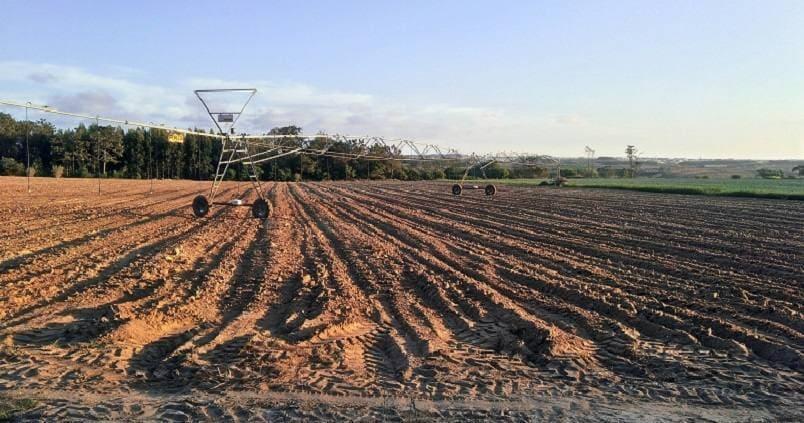 Jornada sobre suelos degradados y cómoprevenirlos mediante enmiendas orgánicas de nueva generación