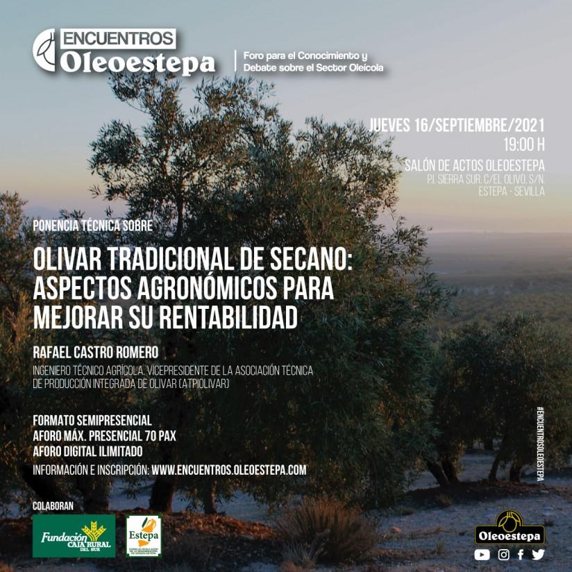 Encuentros Oleoestepa aborda la mejora de la rentabilidad del olivar tradicional de secano