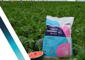 ICL lanza en Fruit Attraction su nuevo catálogo Nova Complex Optima