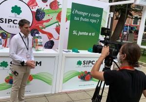 Sipcam Iberia presenta en Huelva el biofungicida Araw para berries