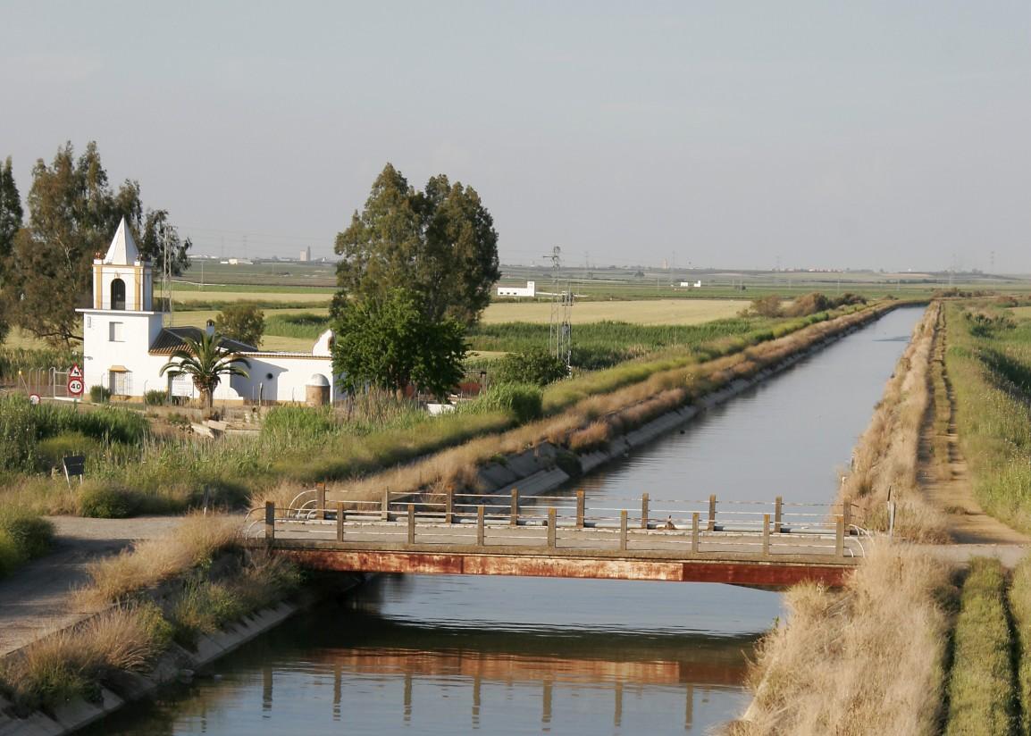 Las políticas comunitarias no garantizan el uso sostenible del agua por los agricultores, según el TCE