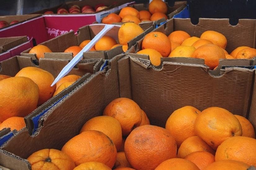 El Gobierno pide a la CE introducir el sistema de control de tratamiento de fríopara las importaciones citrícolas