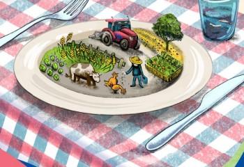 La estrategia «De la granja a la mesa» sigue sin contemplar mecanismos claros de sostenibilidad económica y social. Por Cooperativas Agro-alimentarias