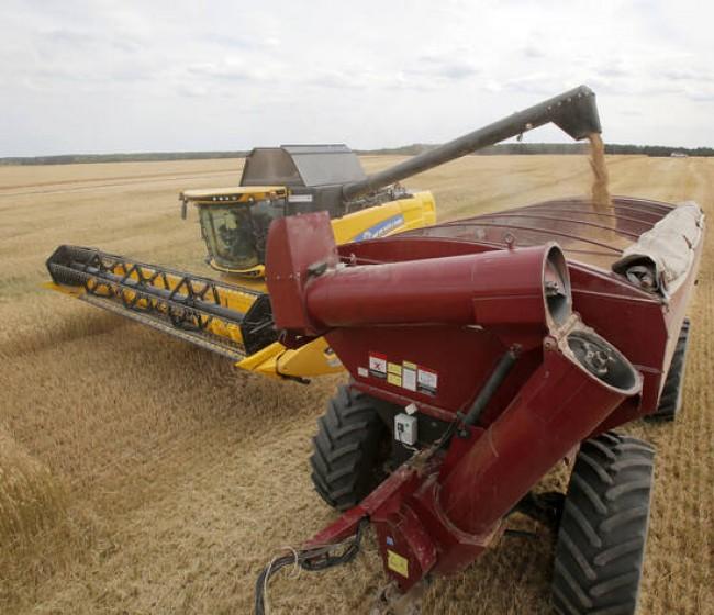 El índice FAO de precios mundiales de los alimentos básicos recuperó su senda alcista en agosto
