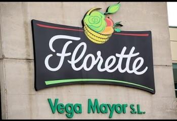 Vegetales de la Mancha confirma el cierre de su planta de Iniesta