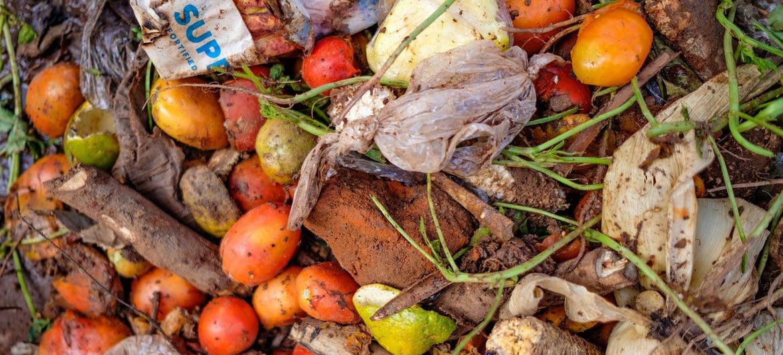 El mundo desperdicia el 17% de los alimentos, mientras que 811 millones de personas sufren hambre