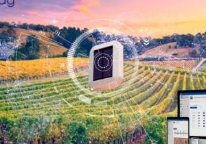 Digitalizar e informatizar el riego en cultivos hortícolas y viñedos
