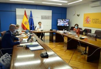MAPA y CC.AA. avanzan en el diseño de los ecoesquemas y del pago redistributivo del próximo PE-PAC
