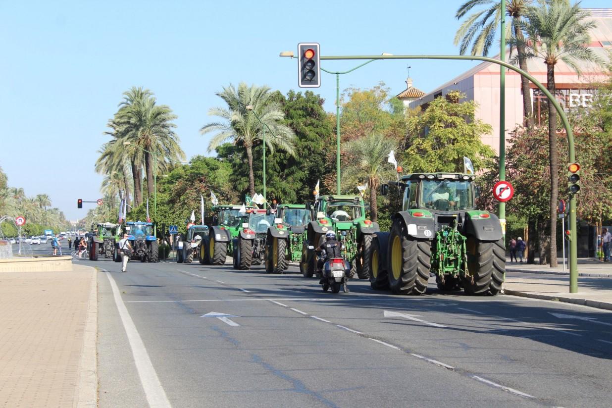 3_Tractores Palmera (2)