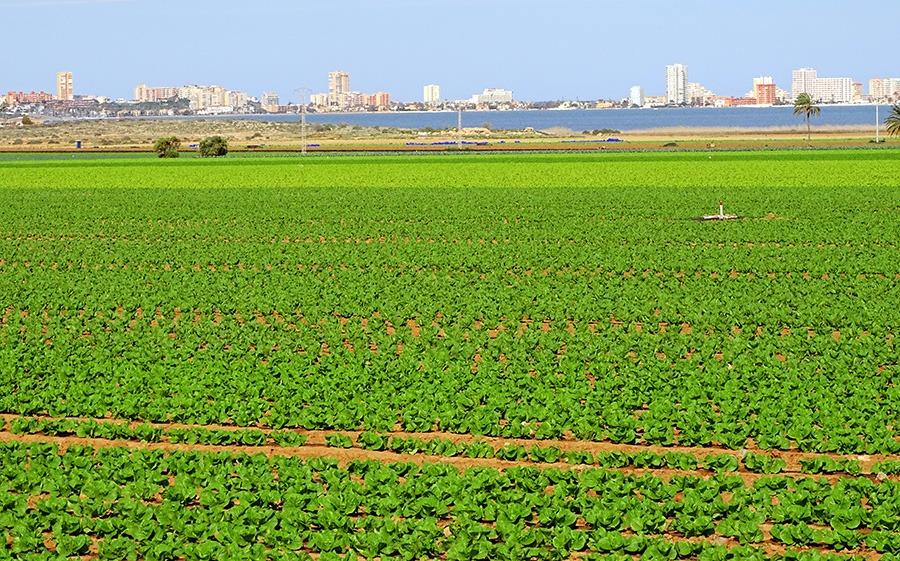 La CE reclama hacer mucho más para reducir la contaminación de las aguas por nitratos de origen agrícola