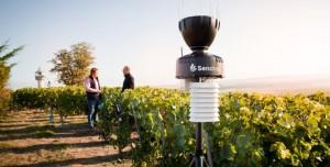 Finalizada la campaña 2021, Sencrop ofrece a los agricultores un informe meteorológico sobre la temporada