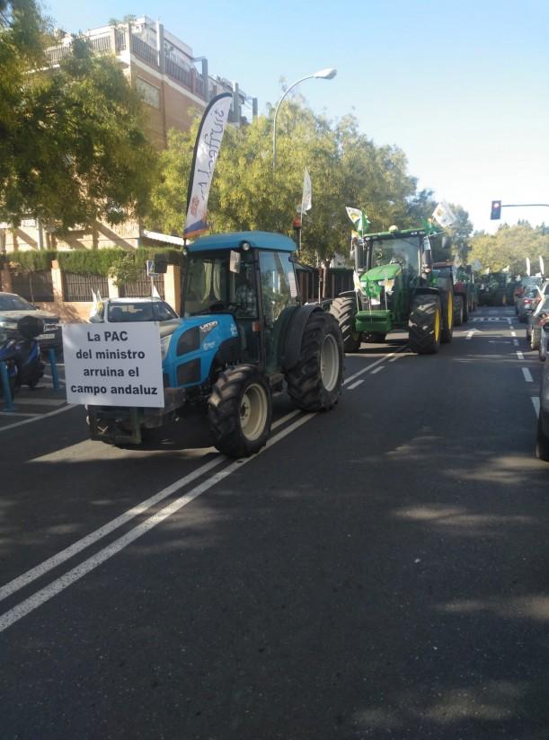 Caravana de trractores y vehículos 1 (2)