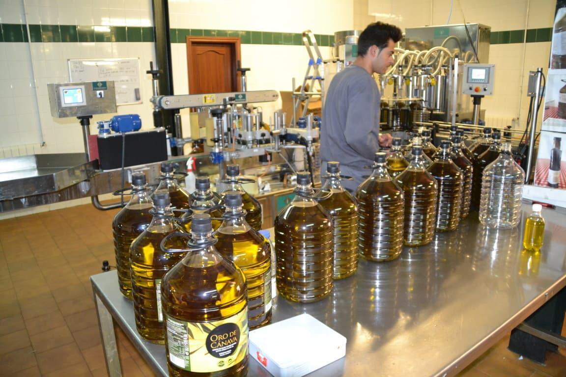 Ralentización de las salidas de aceite de oliva al mercado hasta 107.500 t en agosto