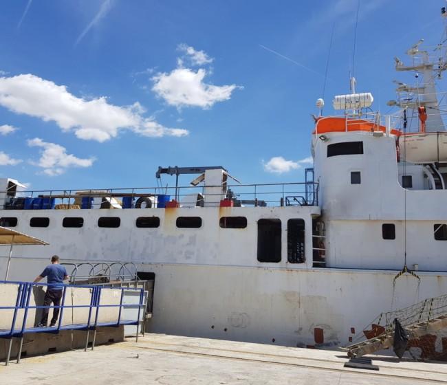 Acuerdo entre direcciones generales para controlar a los barcos utilizados en transporte animal