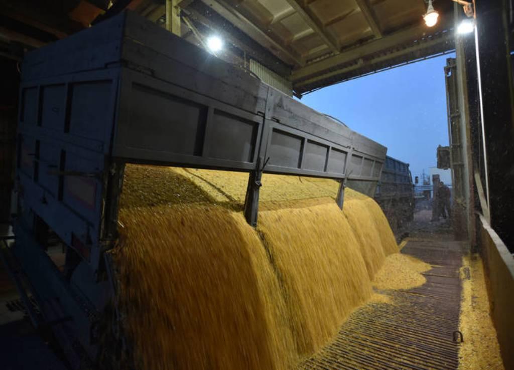 El USDA constata lo ajustado entre oferta y demanda mundial de cereales en 2021/22