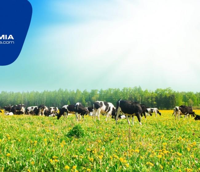 Aprueban la gama de ganadería de Proquimia para su uso en producción ecológica