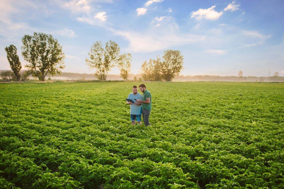 Abierto el plazo para solicitar estancias formativas de jóvenes en explotaciones agrarias modelo del Programa CULTIVA 2021