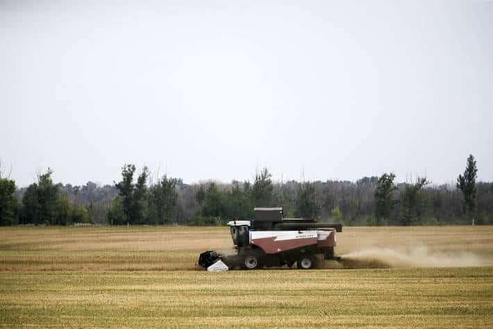 El MAPA constata que los «agricultores activos» perciben hoy el 96% de todas las ayudas directas de la PAC