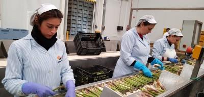 La mujer rural marcará el futuro del sector agroalimentario. Por Jerónima Bonafé.