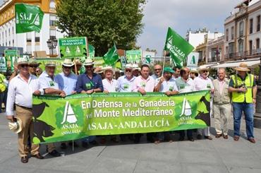 Más de 1.500 ganaderos andaluces se manifiestan en protesta por la aplicación del nuevo CAP